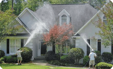 House Power Washing